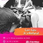 Cartell del Curs bàsic de voluntariat